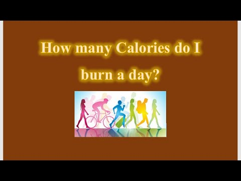 How many Calories do I burn a day | Lose Weight Fast | Do ...