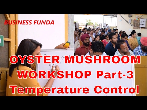 OYSTER MUSHROOM HANDS ON WORKSHOP....PART-3 (temperature con