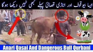 Attack of Qurbani Animal | Cow Attack  | Animal Attack | Qurbani 2020 | eid  2020 | Anari Qassai