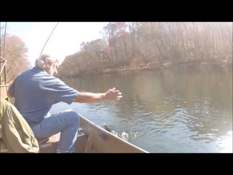 Trout Fishing The Little Red River. (Arkansas)