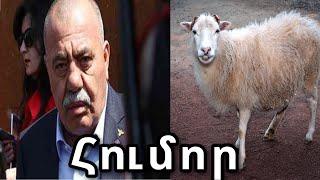 Հումոր նվիրված ադրբեջանին // Humor nvirvac adrbejanin // Юмор посвящённый азербайджану