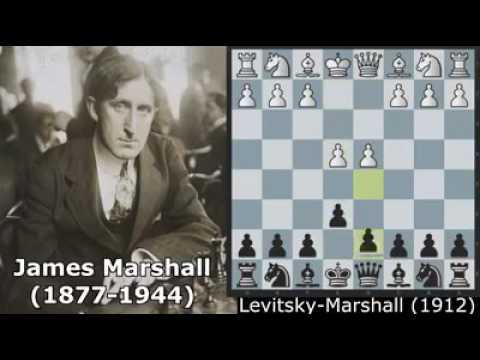 Levitsky versus Marshall