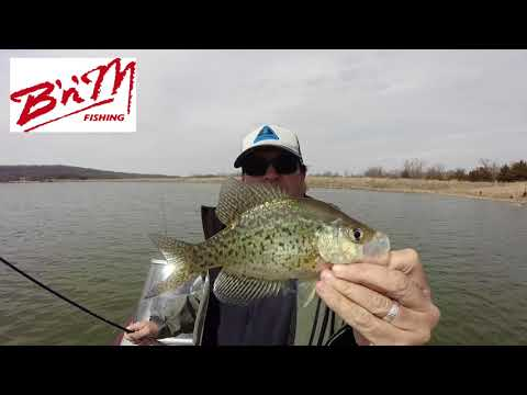 Crappie Kirby March 23 2018 Douglas County Lake in Kansas