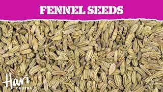 Spotlight on Spices | Fennel Seeds