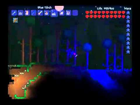 Terraria | Werewolf Form | I feel the Power! - YouTube