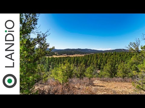 Land For Sale in Colorado ⛰️ 5.14 Acre Wooded Mountain Lot near Trinidad Lake