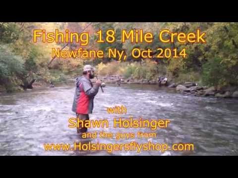 Download Youtube: 18 Mile Creek, NY Salmon Fishing 2014, Holsinger's Fly Shop