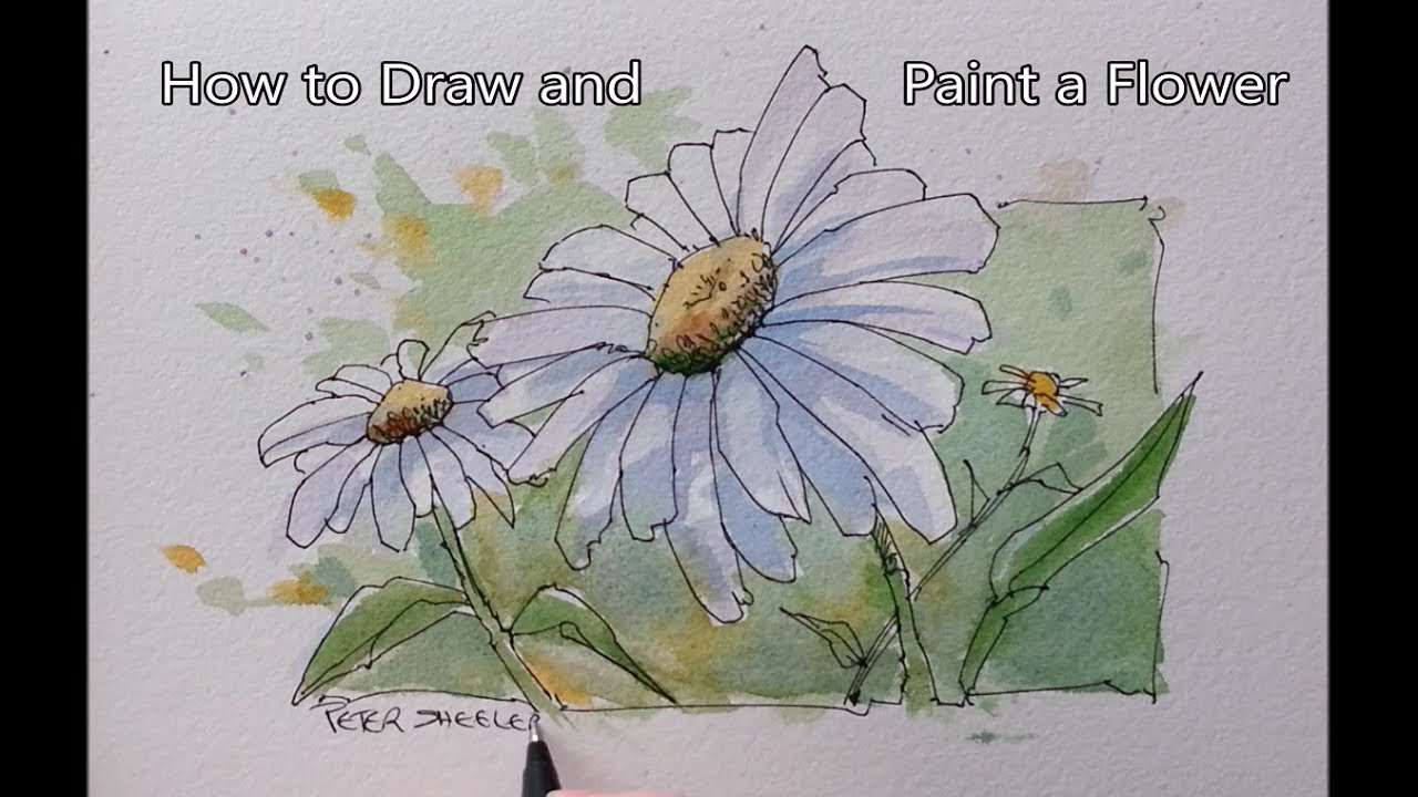 Daisy Flower Line Drawing : How to paint a flower line and wash daisy easy follow real