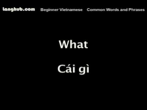 Common Words and Phrases - Langhub.com [Learn Vietnamese]