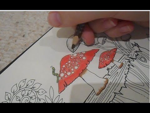 ENCHANTED FOREST COLOURING BOOK(TREE TRUNK HOUSE) PAGE 22-PART 1.