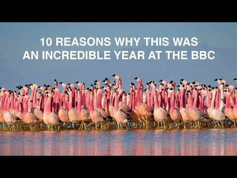 Download Youtube: 10 reasons why this was an incredible year at the BBC