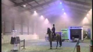 Michael Peace - Problem Horse Trainer - Police Training.mp4