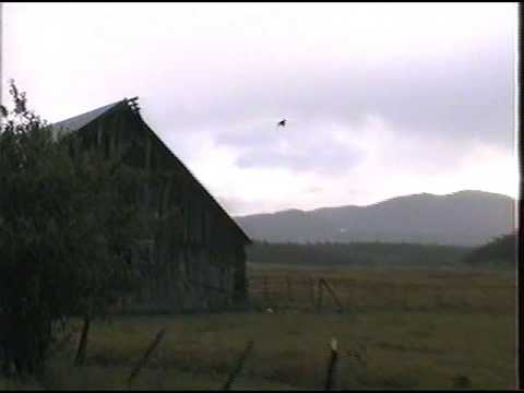 BATES - AUSTIN OREGON: Looking From Henry Ricco's Old Barn Toward Dixie Mountain