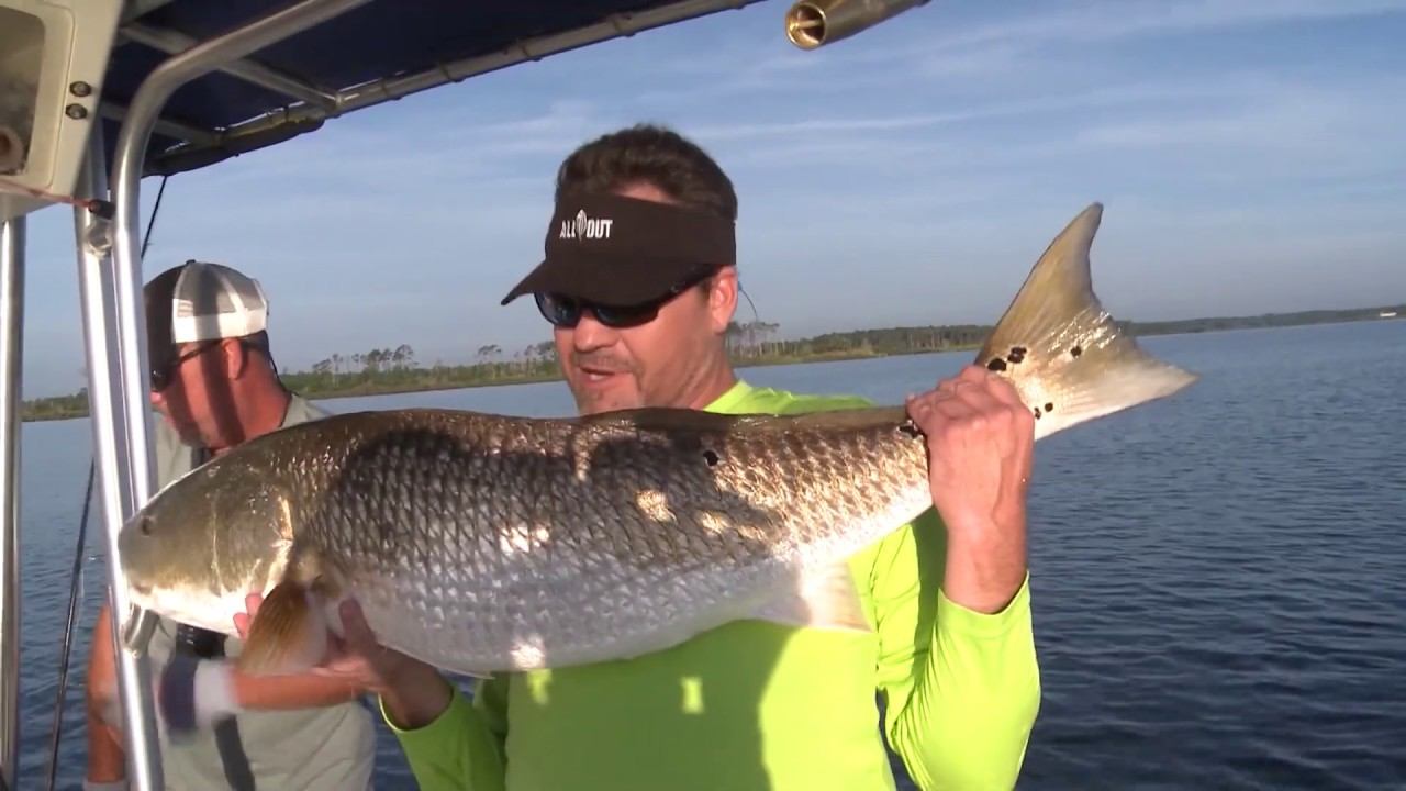 Trophy Red Drum Fishing