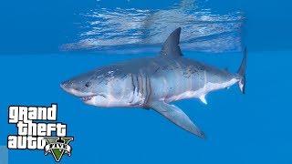Я ПОЙМАЛ АКУЛУ В GTA 5 - РЫБАЛКА В GTA 5!(Я поймал акулу в gta5. Мод на рыбалку и теперь у нас рыбалка в GTA 5. Ответим на вопрос Как поймать акулу в GTA 5!..., 2016-10-01T15:00:04.000Z)
