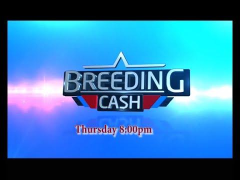 BREEDING CASH IN NYANDARUA COUNTY