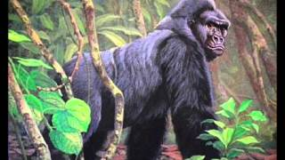 "R. Arnell: Symphony No. 5 ""The Gorilla"" (1955-57)"