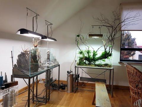 Едем в гости в ADA Idea Studio Poland. Красивейшая студия аквадизайна Европы