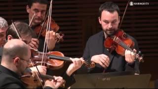 Vivaldi Sinfonia RV 717, Venice Baroque Orchestra