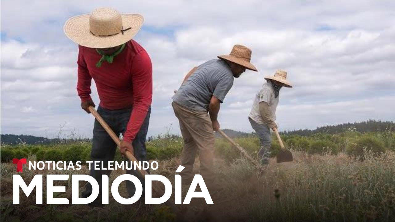 Noticias Telemundo Mediodía, 21 de septiembre de 2021