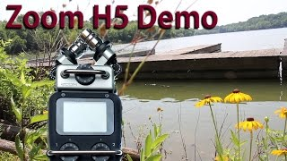 zoom h5 demo nature sounds