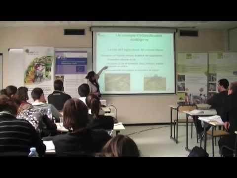 Agriculture de conservation et agriculture biologique