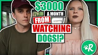 Rover Review 2018 - $3000 A Month For Watching Dogs!?