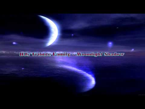 DJs Tribute Family - Moonlight Shadow