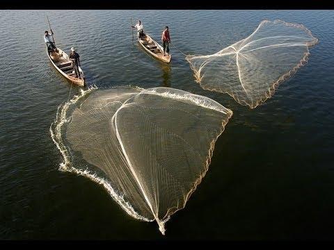 сетка для ловли рыбы на удочку
