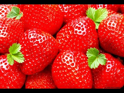 Best strawberries in phularwan Sargodha  Pakistan