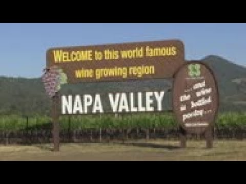 wine article Masks And Merlot California Wineries To Reopen
