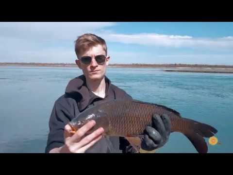 Рыбалка в Казахстане Арал-Тюбе апрель 2019 р. Или.