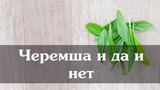 видео Черемша что это такое: применение в блюдах и лечебные свойства