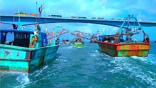 Beautiful scenery in the sea | Boat crossing Pamban train bridge | Rameshwaram | Kadalodi Mejufa