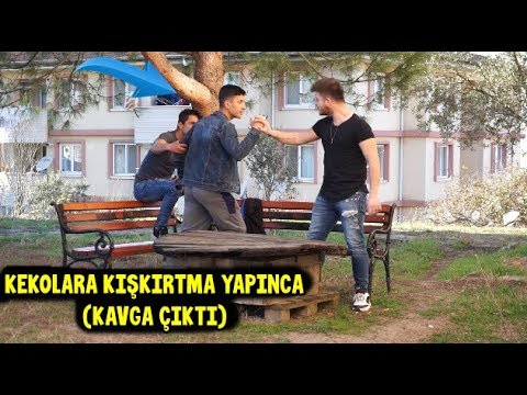 SUBAŞINDA KEKOLARLA DALGA GEÇİNCE (KAVGA ÇIKTI!!) - Pitbull Ailesi TV