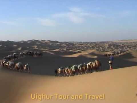 Taklimakan Desert camel trekking