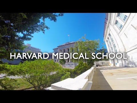 TOUR NA HARVARD MEDICAL SCHOOL  | Luiz Hendrix