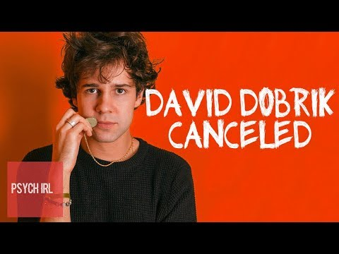 What the Expose of David Dobrik Actually Reveals About Cancel Culture