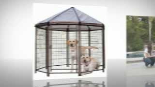 Advantek Pet Gazebo Outdoor Kennel Review