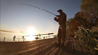 Как поймать речного КАРПА Рыбалка с ночёвкой на реке Днестр 2021 Снасти на карпа сазана