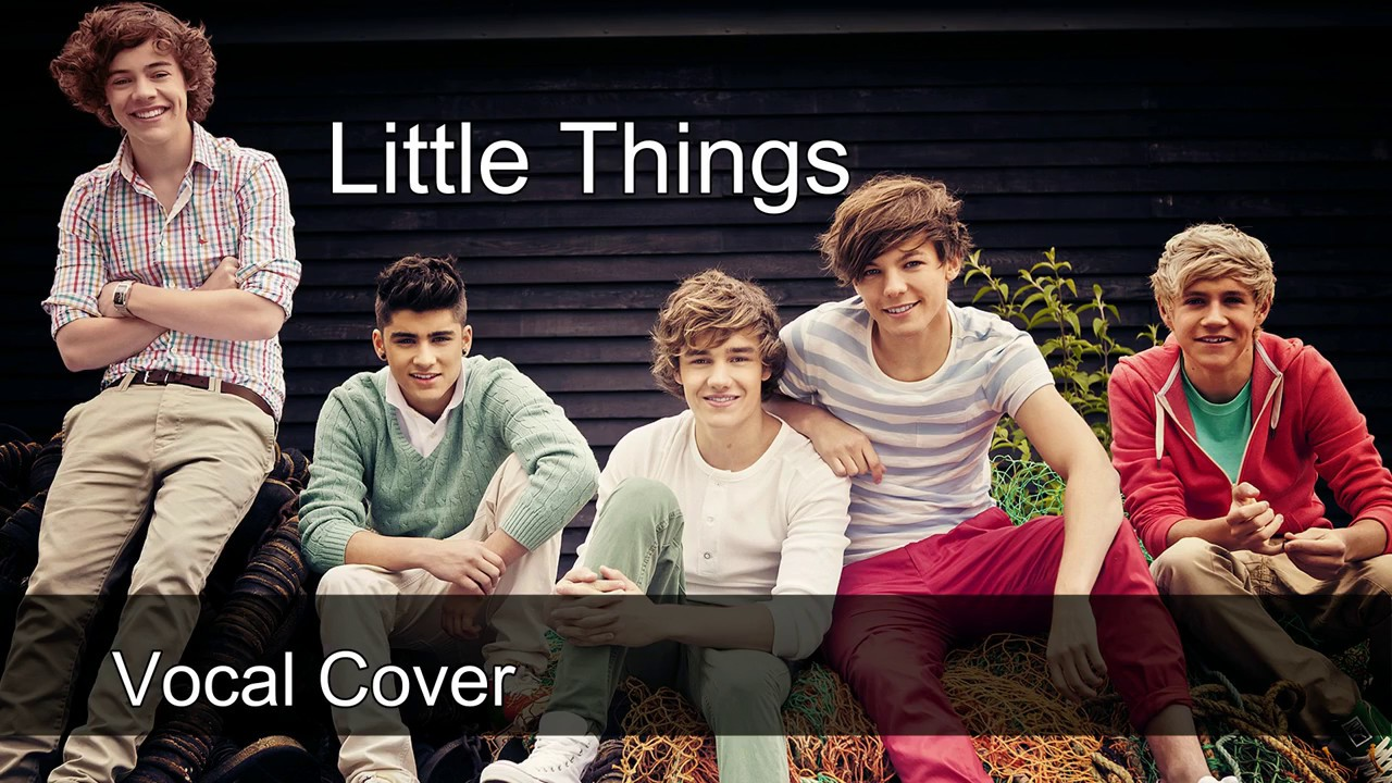 Little Things-One Direction (Vocal Cover) - YouTube