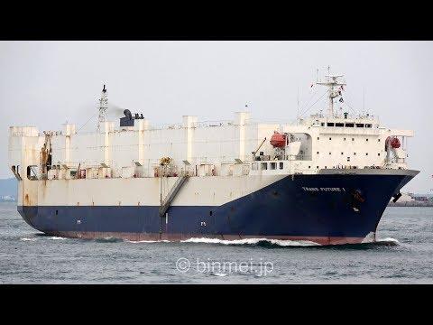 [4K] TRANS FUTURE 1 - TOYOFUJI SHIPPING vehicles carrier