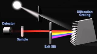 How does a spectrophotometer work?