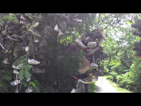 Shoe Tree - Crawford County Indiana - Milltown Indiana