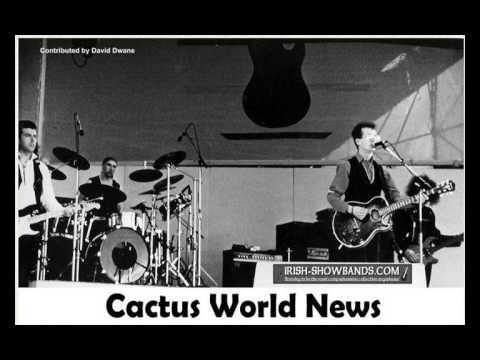 Cactus World News - Rebound