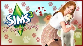 The Sims 3: 100 Puppies Challenge (Part 1) Puppies?