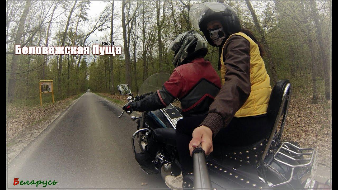 #1Ride  Беловежская Пуща suzuki VL 1500 Intruder