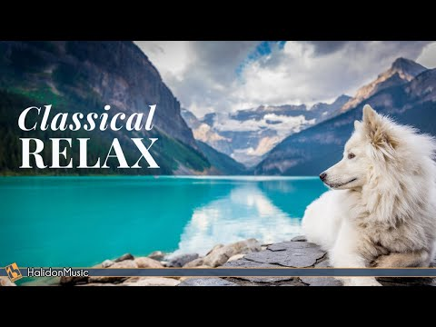 Classical Music for Relaxation: Chopin, Beethoven, Liszt...