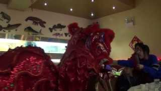 NFMA Lion Dance 2014 Chinese New Years in Chinatown Chicago