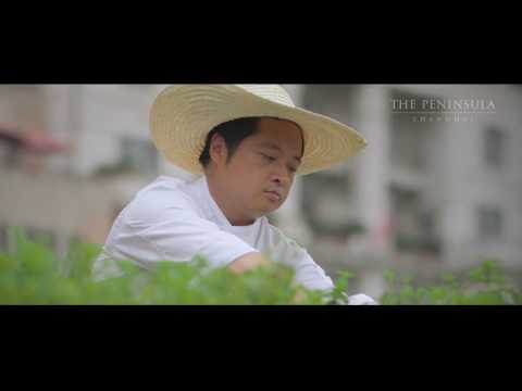 THE PENINSULA  SHANGHAI  реклама